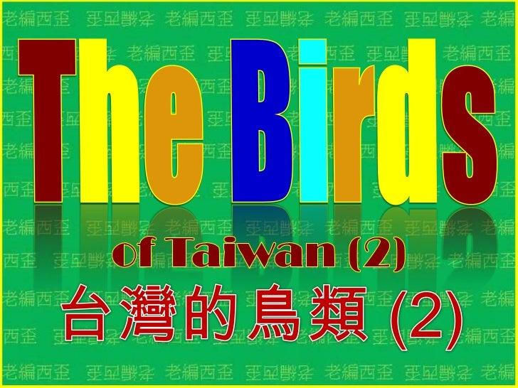The birds of taiwan (2) 台灣的鳥類 (2)
