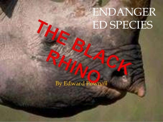 ENDANGER           ED SPECIESBy Edward Pownall