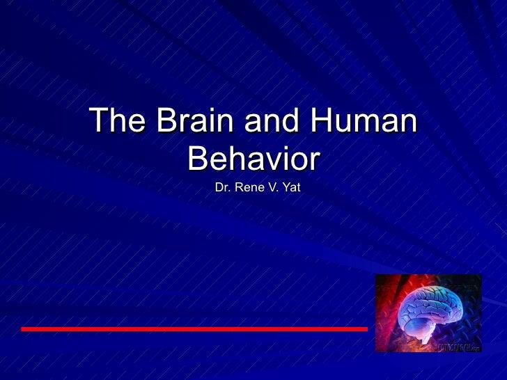 Dr. Rene V. Yat The Brain and Human Behavior