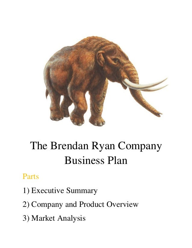 The Brendan Ryan Company Business Plan Parts 1) Executive Summary 2) Company and Product Overview 3) Market Analysis