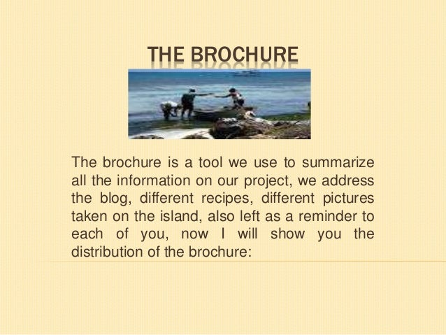 THE BROCHURE  The brochure is a tool we use to summarize all the information on our project, we address the blog, differen...