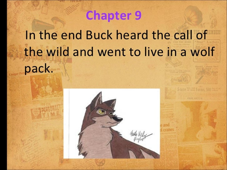an analysis of the character of buck in the call of the wild The call of the wild  the call of the wild chapter 1 table of contents  all subjects book summary character list summary and analysis  buck does not know .
