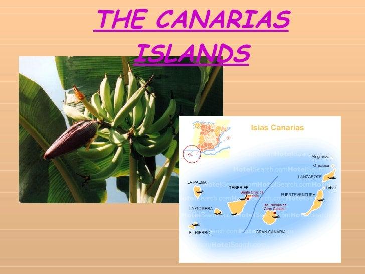 THE CANARIAS ISLANDS