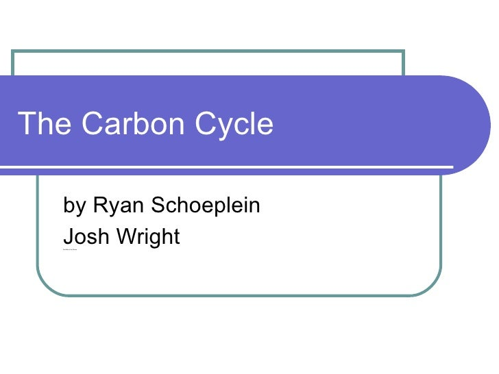The Carbon Cycle by Ryan Schoeplein Josh Wright And Melvin the Moose