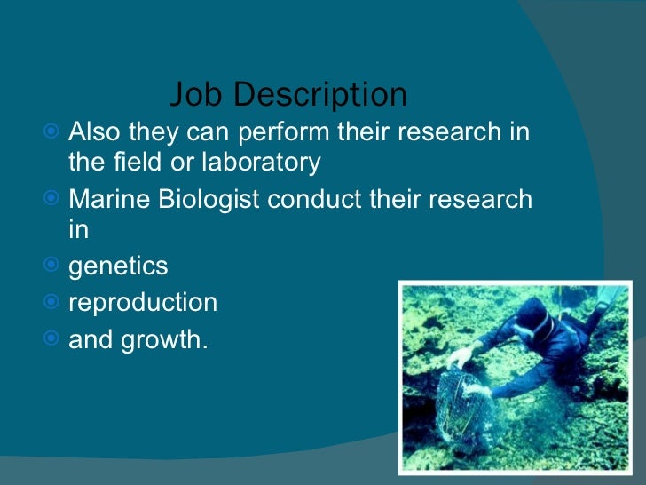 Job Description For A Marine Biologist