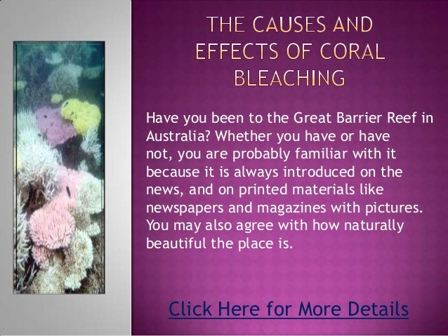 Have you been to the Great Barrier Reef inAustralia? Whether you have or havenot, you are probably familiar with itbecause...
