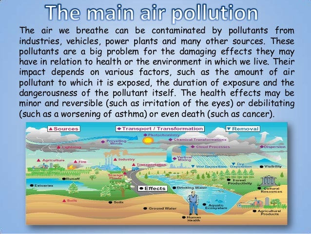 Cause and Effect Essay Example: Air Pollution Poignant