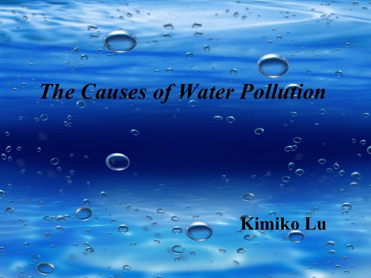 Essay Water Pollution