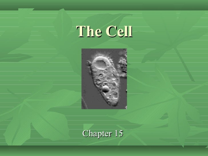 The CellChapter 15