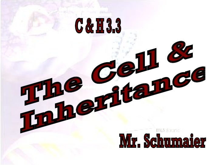 The Cell & Inheritance Mr. Schumaier C & H 3.3