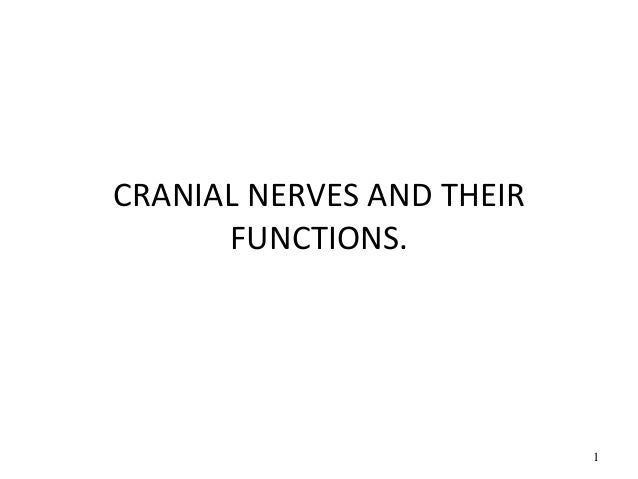 CRANIAL NERVES AND THEIR FUNCTIONS. 1