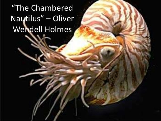 the chambered nautilus by oliver wendell essay The chambered nautilus analytical essay by master researcher the chambered nautilus a rhyme scheme and symbolic analysis of the chambered nautilus by oliver wendell holmes.