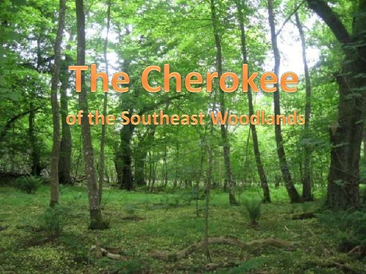 The Cherokee<br />of the Southeast Woodlands<br />