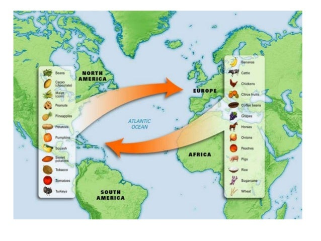 What goods were exchanged in the triangular trade system