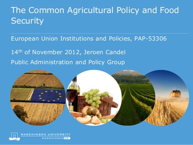 The Common Agricultural Policy and FoodSecurityEuropean Union Institutions and Policies, PAP-5330614th of November 2012, J...