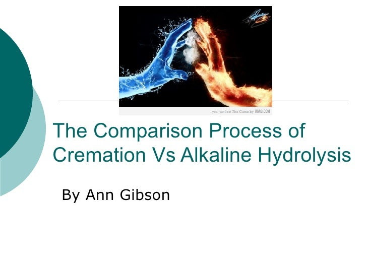 The Comparison Process Of Cremation Vs Alkaline Hydrolysis