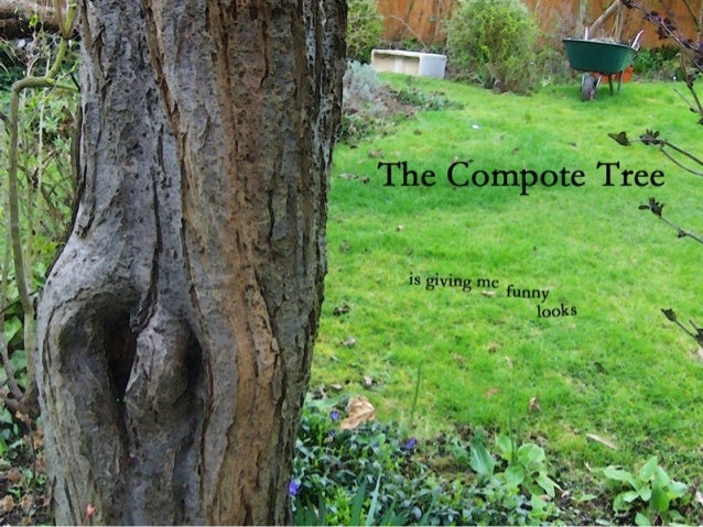 The compote tree