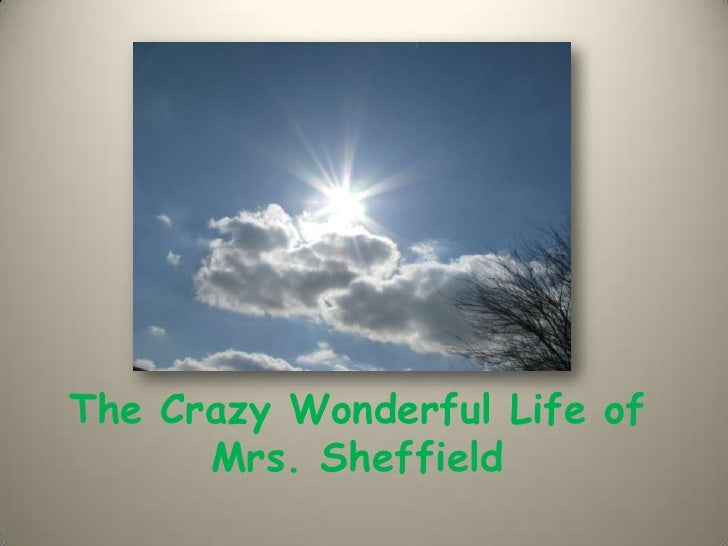 The crazy wonderful life of