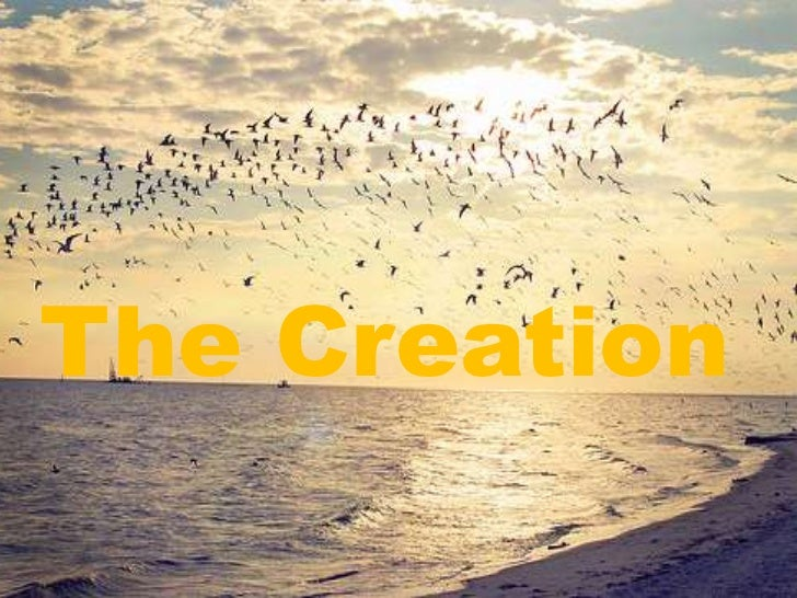 The Creation(300312)