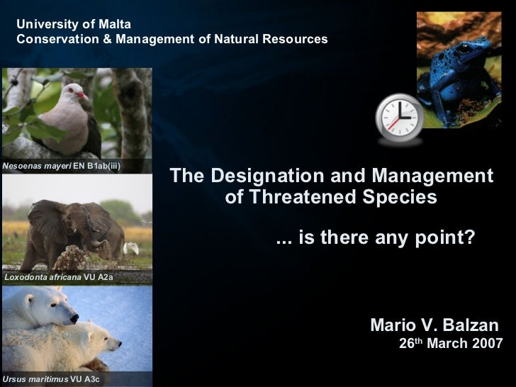 The Designation and Management of Threatened Species ... is there any point? Mario V. Balzan  26 th  March 2007 Nesoenas m...