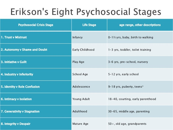 The developmental stages
