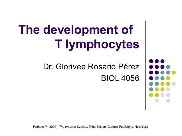 The development of      T lymphocytes        Dr. Glorivee Rosario Pérez                        BIOL 4056  Parham P. (2009)...