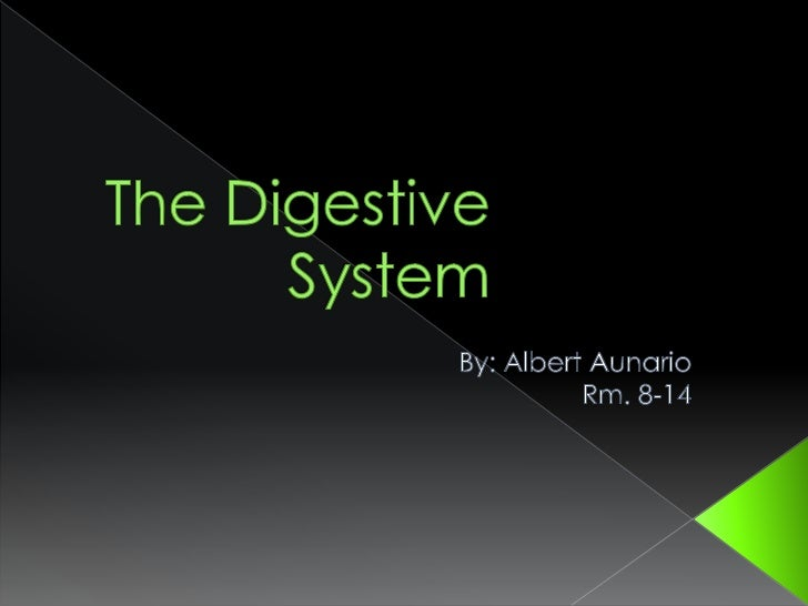 The Digestive System<br />By: Albert Aunario<br />Rm. 8-14<br />