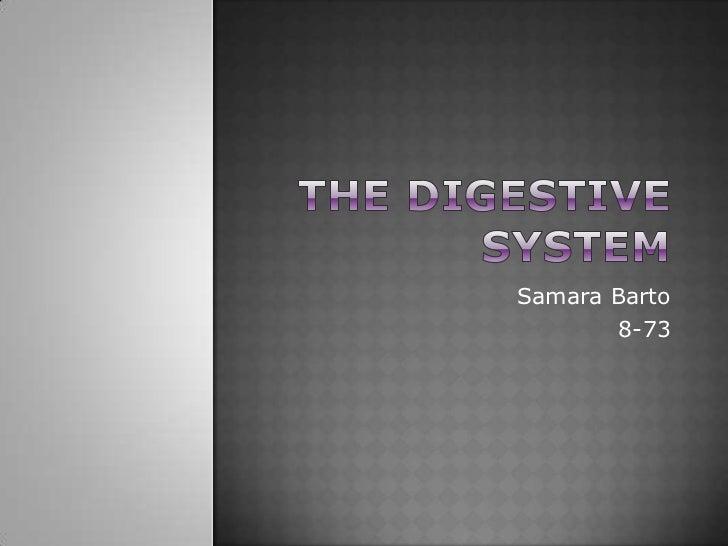 The Digestive System<br />Samara Barto<br />8-73<br />