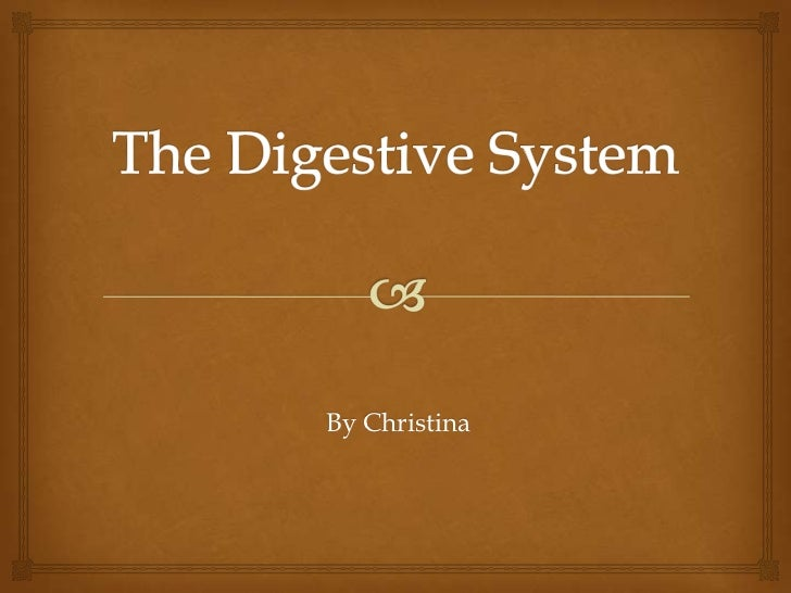 The Digestive System<br />By Christina<br />