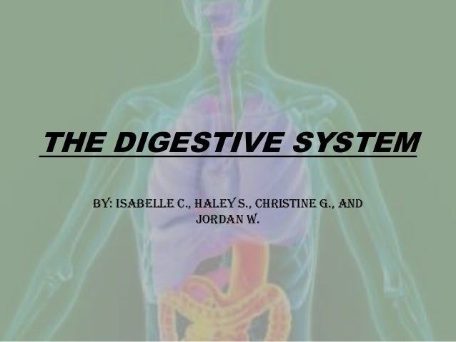 THE DIGESTIVE SYSTEM By: Isabelle C., Haley S., Christine G., and Jordan W.