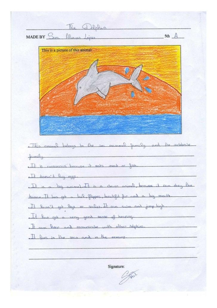 The dolphin sara