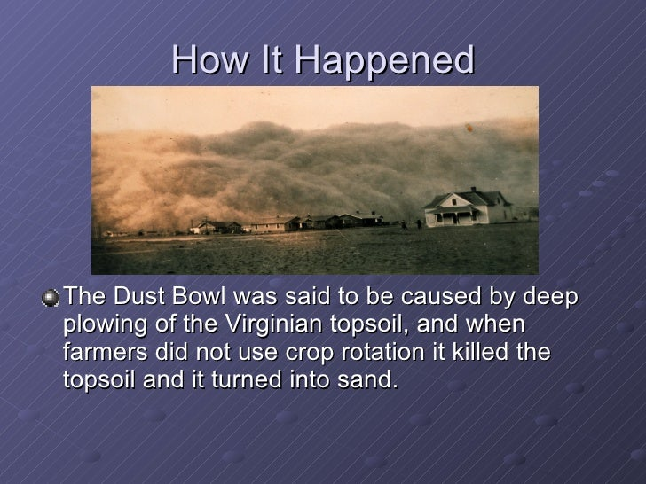 what caused the dust bowl 3 essay Examine the documents that follow and do your best to answer the question before us: what caused the dust bowl background essay questions 1 what two states in the dust bowl region have panhandles texas and oklahoma 2.