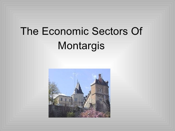 The Economic Sectors Of Montargis