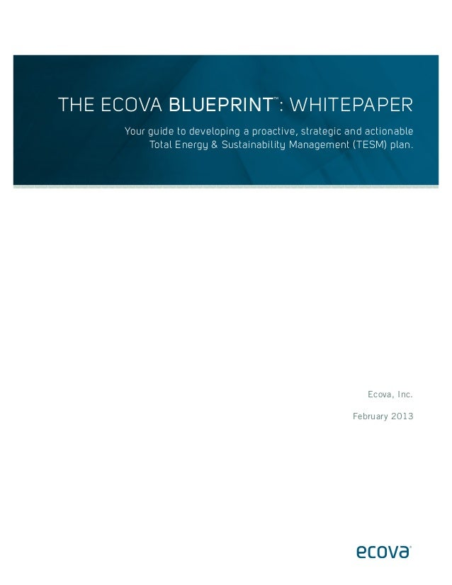 THE ECOVA BLUEPRINT : WHITEPAPER ™  Your guide to developing a proactive, strategic and actionable Total Energy & Sustaina...