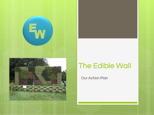 The Edible Wall Our Action Plan