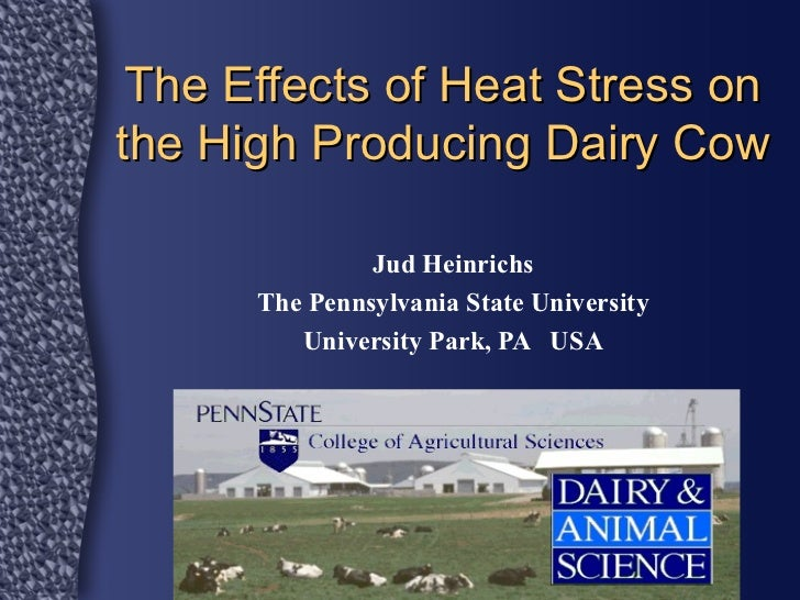The Effects of Heat Stress on the Nutrition of the Dairy Cow
