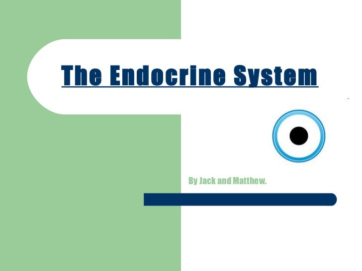 The Endocrine System By Jack and Matthew.