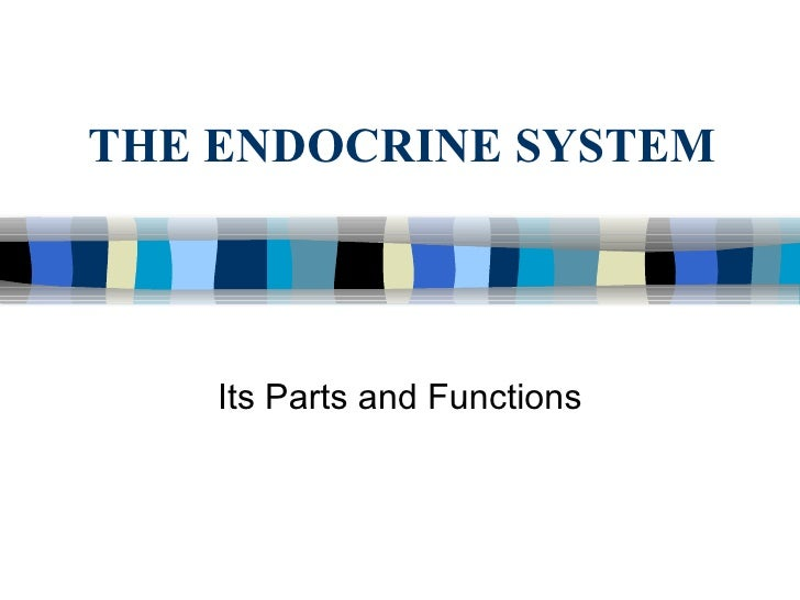 THE ENDOCRINE SYSTEM Its Parts and Functions
