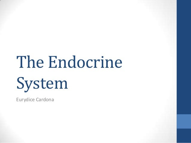 The EndocrineSystemEurydice Cardona
