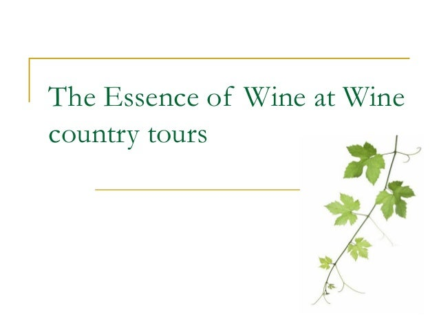 The Essence of Wine at Wine country tours