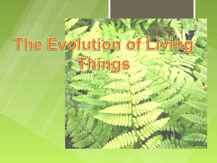 The Evolution ofLiving Things  Changes over Time