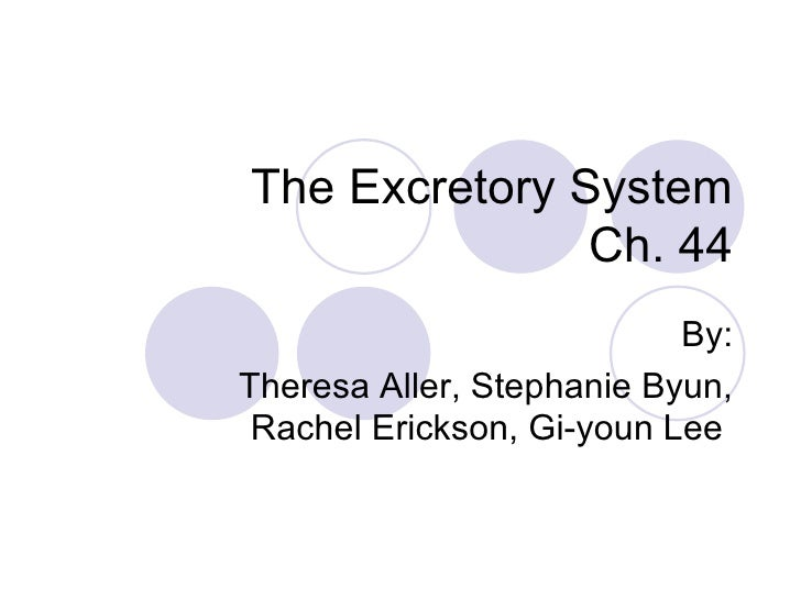 The Excretory System Ch. 44 By: Theresa Aller, Stephanie Byun, Rachel Erickson, Gi-youn Lee