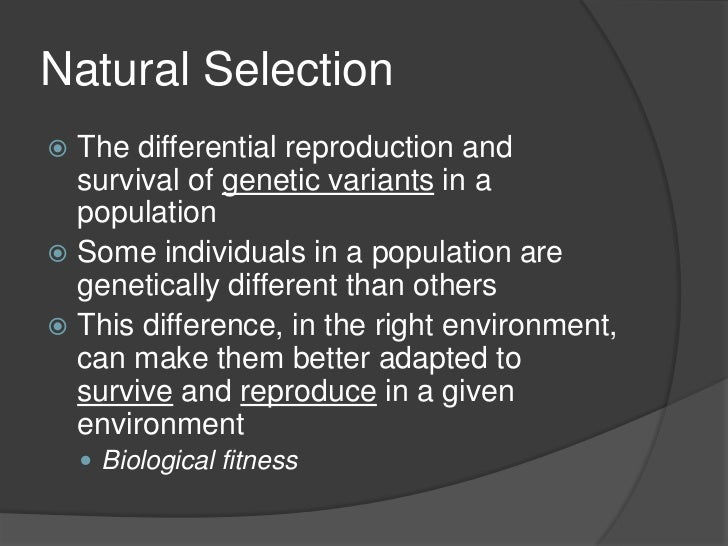 Concept Of Natural Selection Given By Darwin