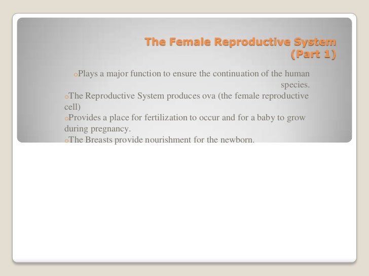 The Female Reproductive System                                             (Part 1)  oPlays a major function to ensure the...