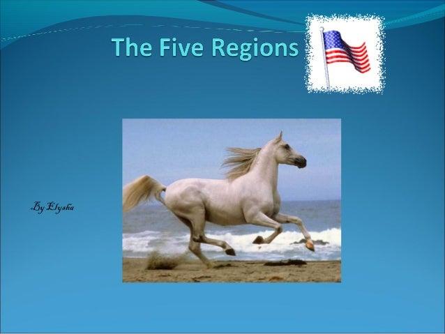 The five regions Elyssa