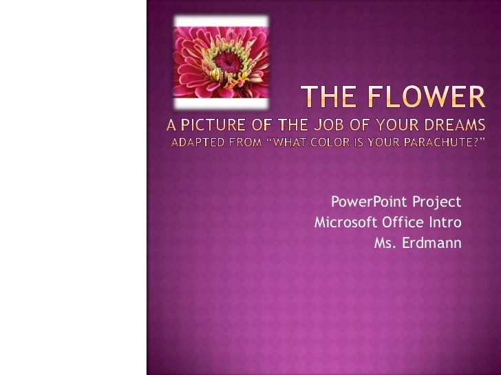 The Flower Career Project
