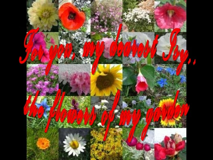 For you, my dearest Isy,, the flowers of my garden