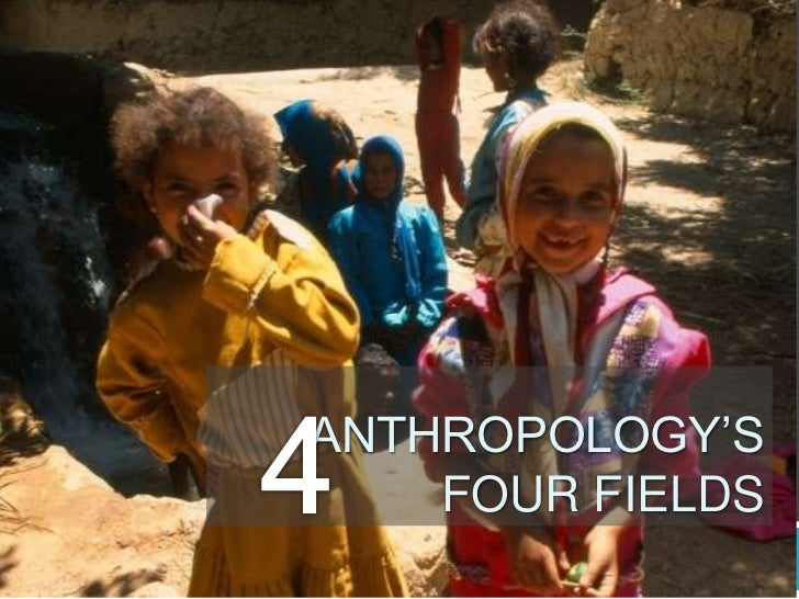 ANTHROPOLOGY'S    FOUR FIELDS