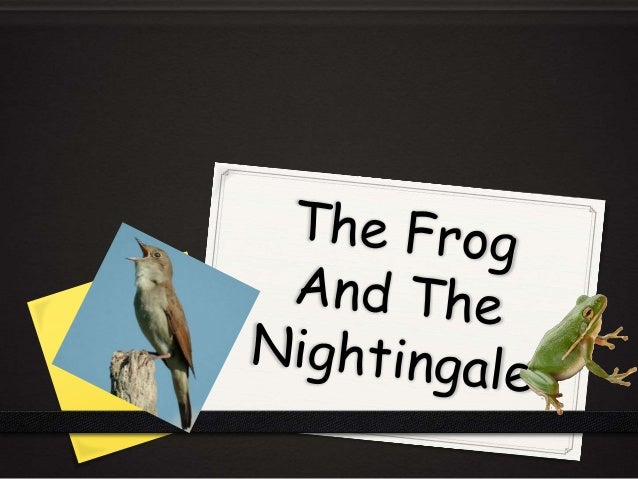 What was the difference between the frog and the nightingale