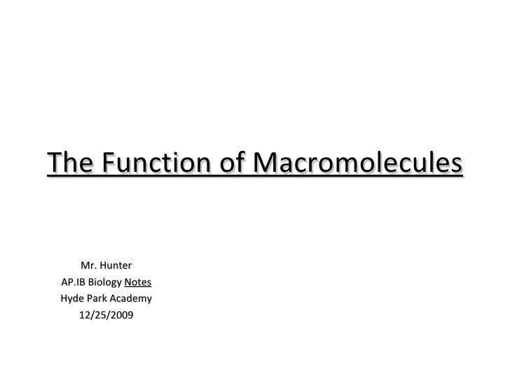 The Function Of Macromolecules Notes